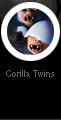 Gorilla twins